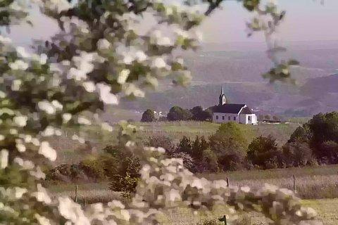 Weitaufnahme der Rochuskapelle in Nittel
