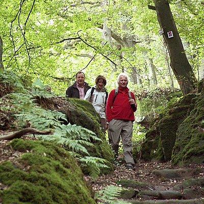Foto: Römertor Kastel-Staadt (2)