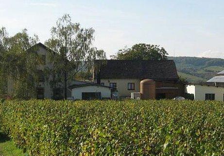 Weingut Sauerwein Palzem