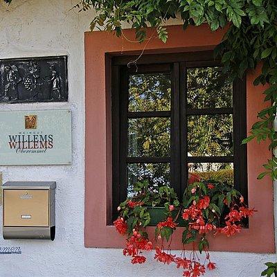 Foto: Weingut Willems-Willems (3)