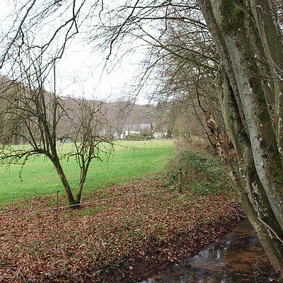 Foto: Gästehaus Herrenmühle (14)