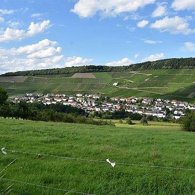 Foto: Ockfen (1)