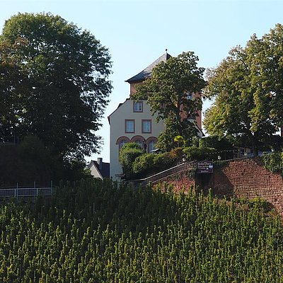 Foto: Kunoturm Saarburg (2)