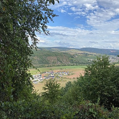 Foto: Blick ins Saartal (10)
