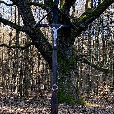 Foto: Krohkreuz (01)
