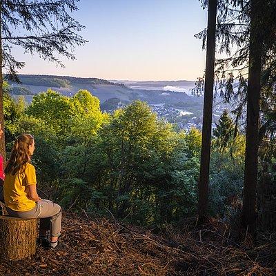 Foto: Aussichtspunkt mit Blick auf Saarburg (04)