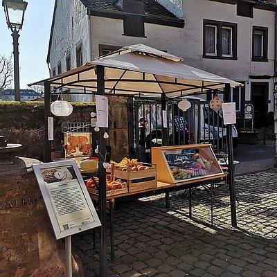 Foto: Staden-Picknick (1)