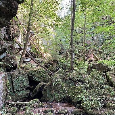 Foto: Ewigbachtal (04)