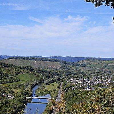 Foto: Saar-Riesling-Steig (04)