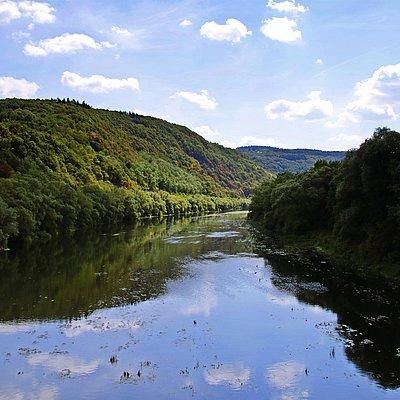 Foto: Naturschutzgebiet Wiltinger Saarbogen (4)