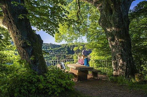 Elisensitz Kastel-Staadt (1)