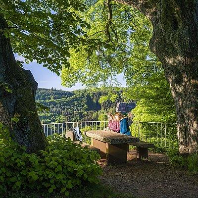 Foto: Elisensitz Kastel-Staadt (1)