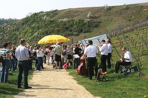 Weinlehrpfadfest (1)