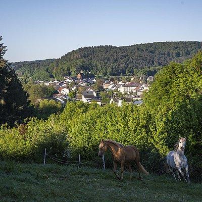 Foto: Blick auf Trassem (03)