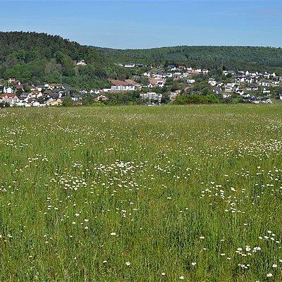 Foto: Kruterberg Blick auf Saarburg (04)