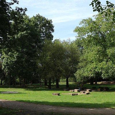 Foto: Maierspark Konz (2)