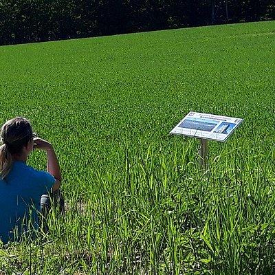 Foto: Saar-Leuktal-Panorama (02)