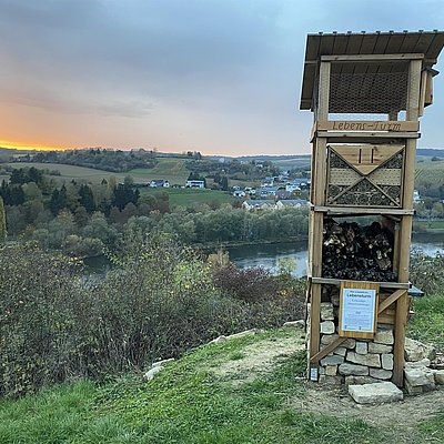 Foto: Lebensturm (1)