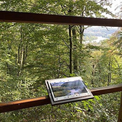 Foto: Aussicht Saarmündung (03)
