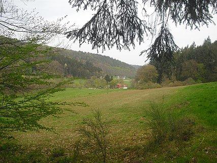 Mühle vor Trassem (01)
