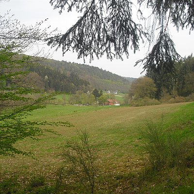 Foto: Mühle vor Trassem (01)