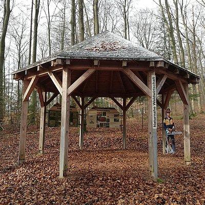 Foto: Informationspavillon Naturnahe Waldwirtschaft (1)