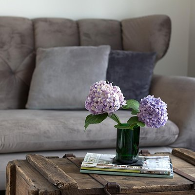 Foto: Gemütliche Couch