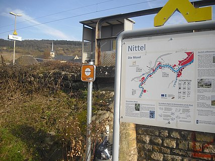Nittel (1)