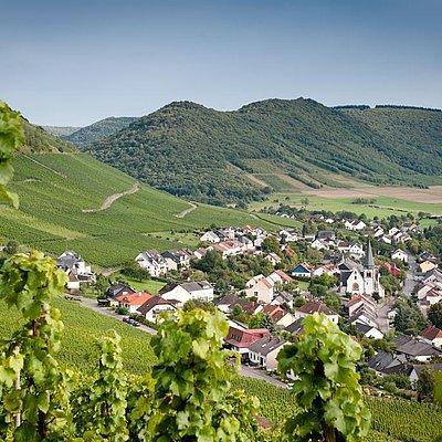 Foto: Weinort Ockfen Weinberge