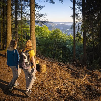 Foto: Aussichtspunkt mit Blick auf Saarburg (05)