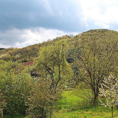Foto: Ausblick aus Kornspeicher (2)