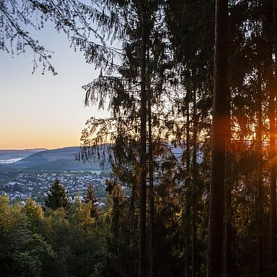 Foto: Aussichtspunkt mit Blick auf Saarburg (02)