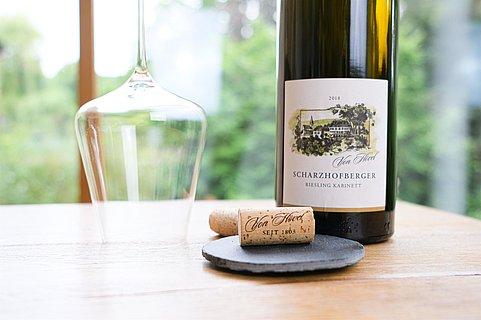 Weingut Von Hövel (1)