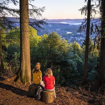 Foto: Aussichtspunkt mit Blick auf Saarburg (01)