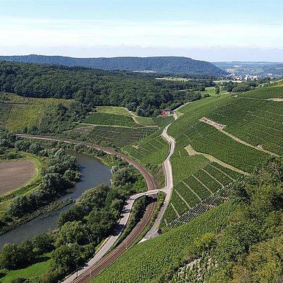 Foto: Naturschutzgebiet Wiltinger Saarbogen (5)