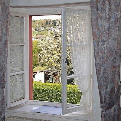 Foto: Blick aus dem Fenster