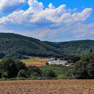 Foto: Schloss Saarstein Serrig (2)