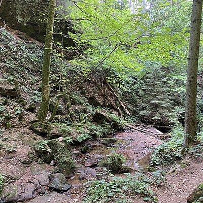 Foto: Ewigbachtal (06)