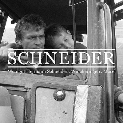Foto: Weingut Schneider (1)