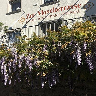 Foto: Hotel-Restaurant Zur Moselterrasse Palzem (2)