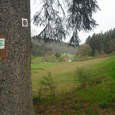 Foto: Mühle vor Trassem (02)