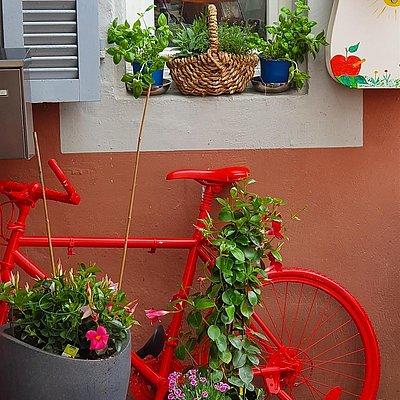 Foto: Restaurant Zunftstube Saarburg (8)