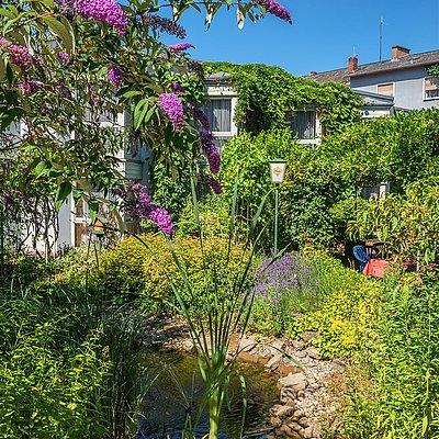 Foto: Garten