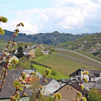 Foto: Ausblick aus Kornspeicher (1)