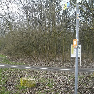 Foto: Lauschpunkt Konz (2)