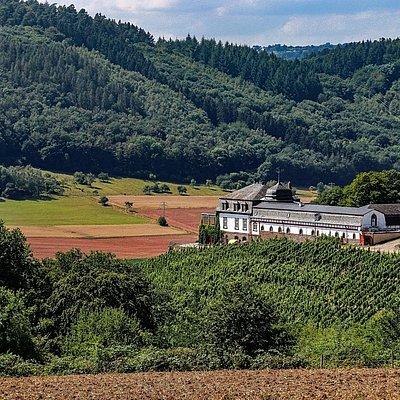 Foto: Schloss Saarstein Serrig (1)