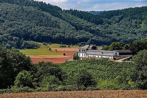 Schloss Saarstein Serrig (1)