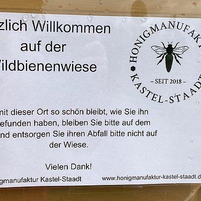 Foto: Wildbienenwiese (02)