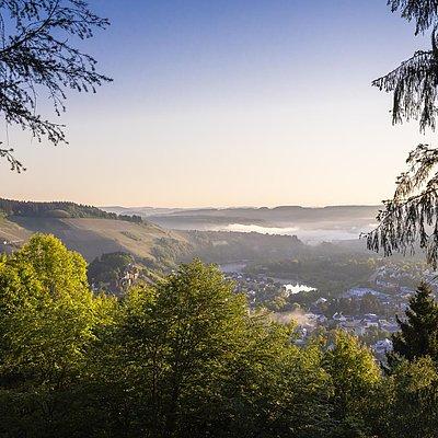 Foto: Aussichtspunkt mit Blick auf Saarburg (06)