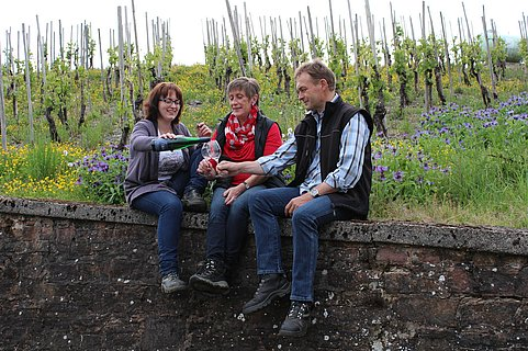 Weingut Rausch Konz-Obermennig (1)
